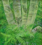 Birch.70x60cm