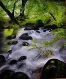River in Spring Card